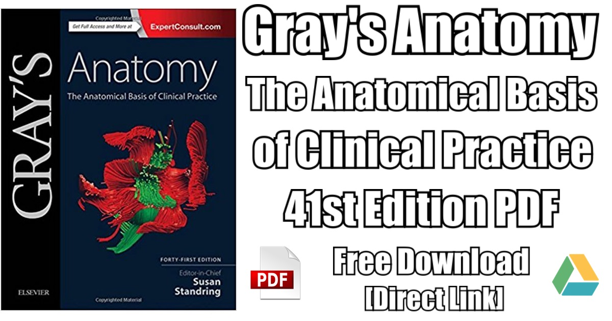 Grays Anatomy The Anatomical Basis Of Clinical Practice 41st